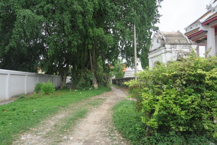 ワットパクナムへの道 (3)
