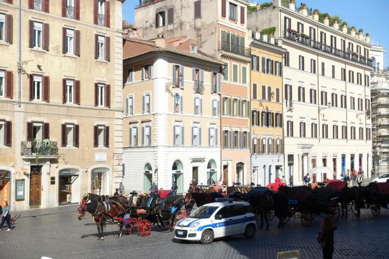Piazza-di-Spagna-horse