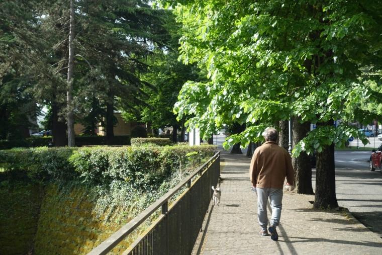 Parco-pubblico (2)
